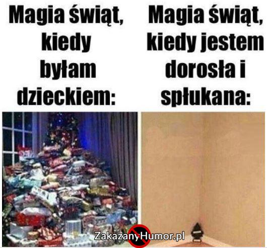 swieta-swieta