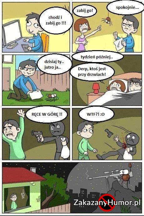 nie-zabijaj-pajakow