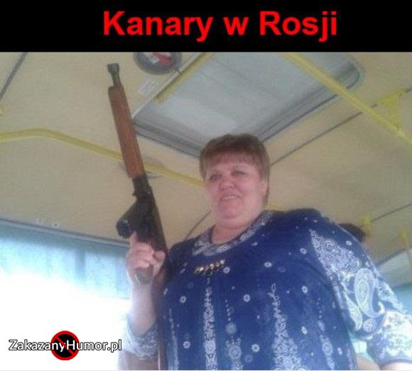 kanary-w-rosji