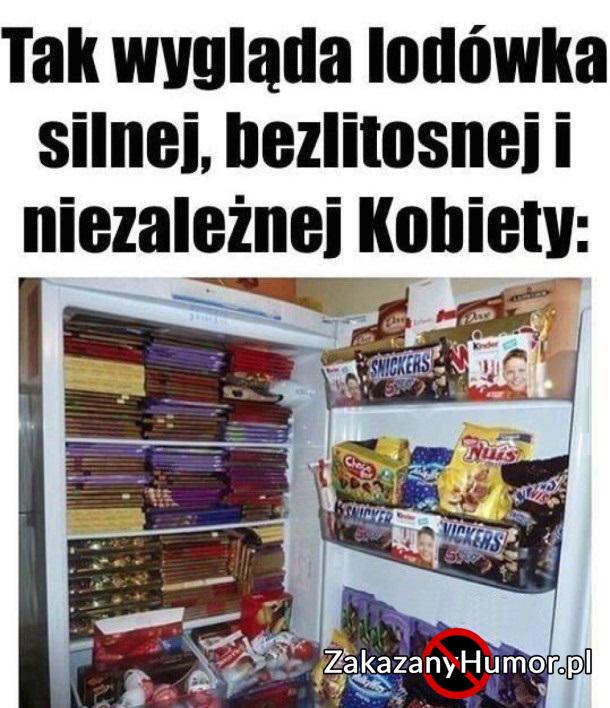 lodowka