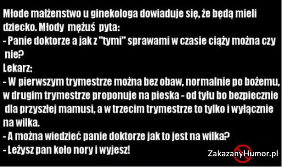 na-wilka