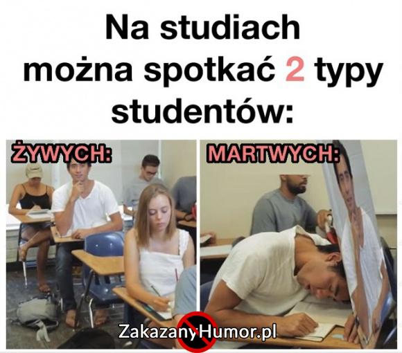 studia-takie-sa