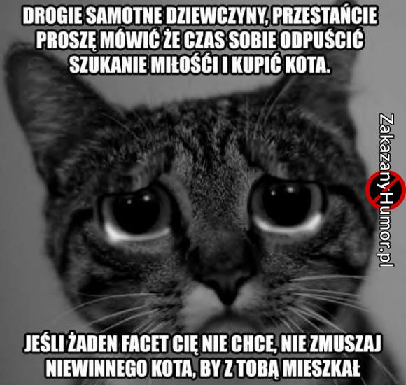 nie-zmszaj-kota