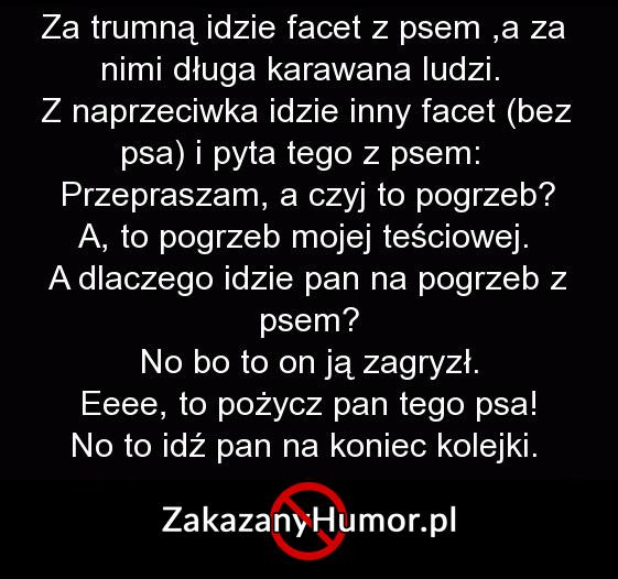 facet-z-psem