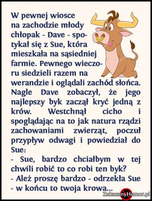 sarkazm_to_potezna_bron__2017-02-21_21-53-53