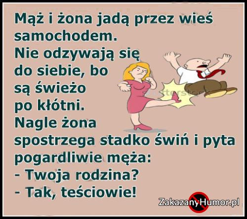 teraz_to_dopiero_podpadl_d_2017-08-02_21-23-02