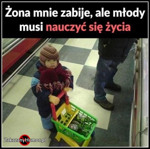 trzeba_nauczyc_mlodego_zycia_2017-10-22_13-07-02