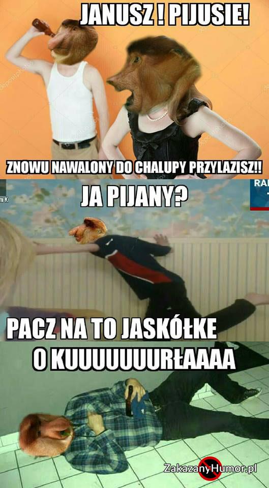 Jaskółka-Janusza