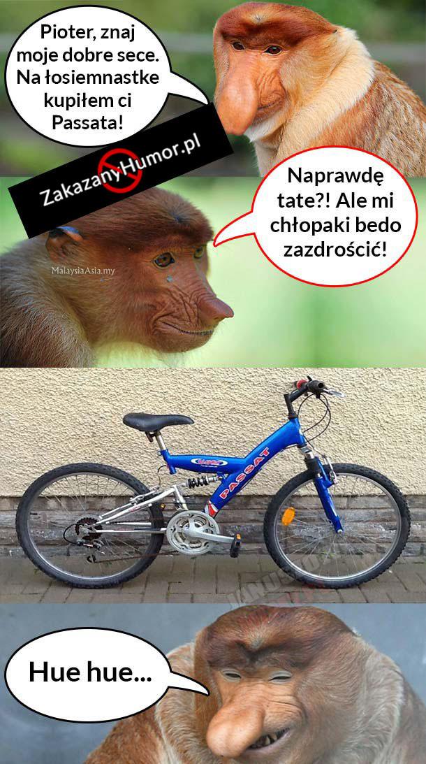 Janusz-kupuje-Pioterowi-Passata