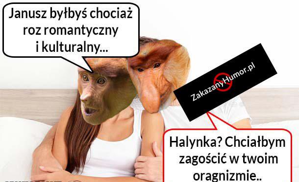 Romantyczny-Janusz