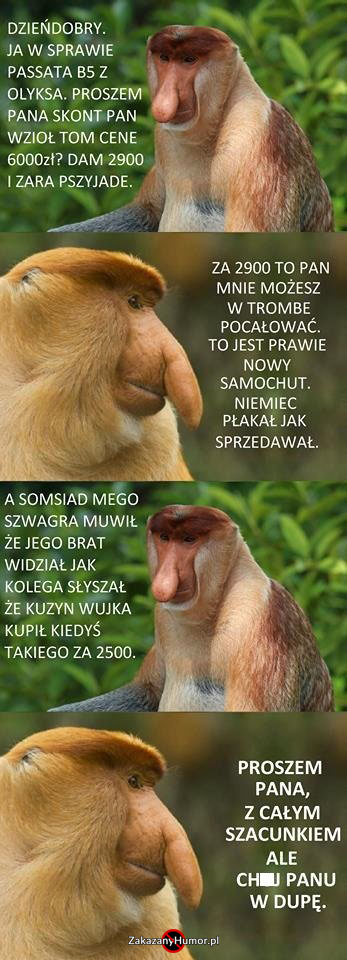 Kiedy-Janusz-Januszowi-sprzedaje-samochód-xD