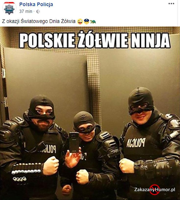 polskie-zolwie-ninja-policja-policjanci-na-facebooku-z-okazji-swiatowego-dnia-zolwia