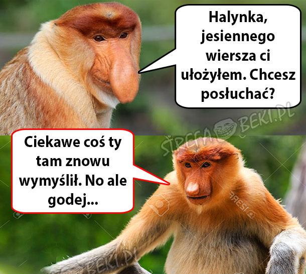 Janusz Ułożył Jesienny Wierszyk Zakazany Humorpl