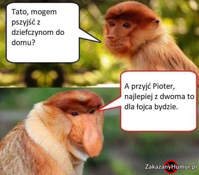 Janusz-zawsze-wie-co-odpowiedzieć