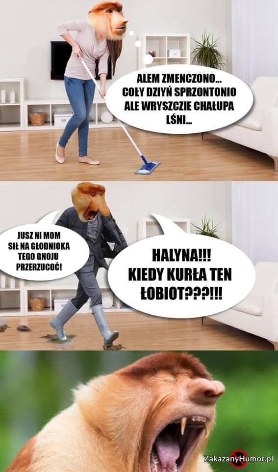 Janusz-tego-nie-przeżyje...