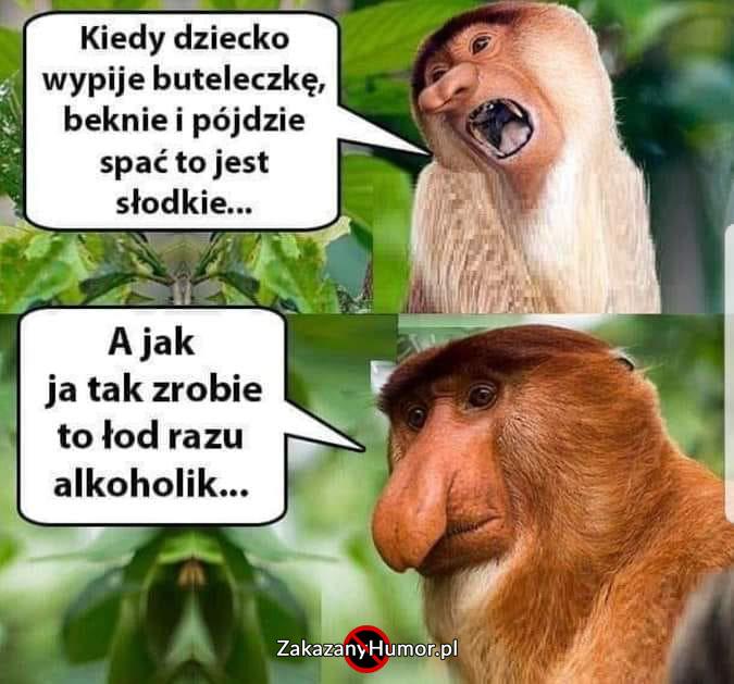 Przemyślenia-Janusza
