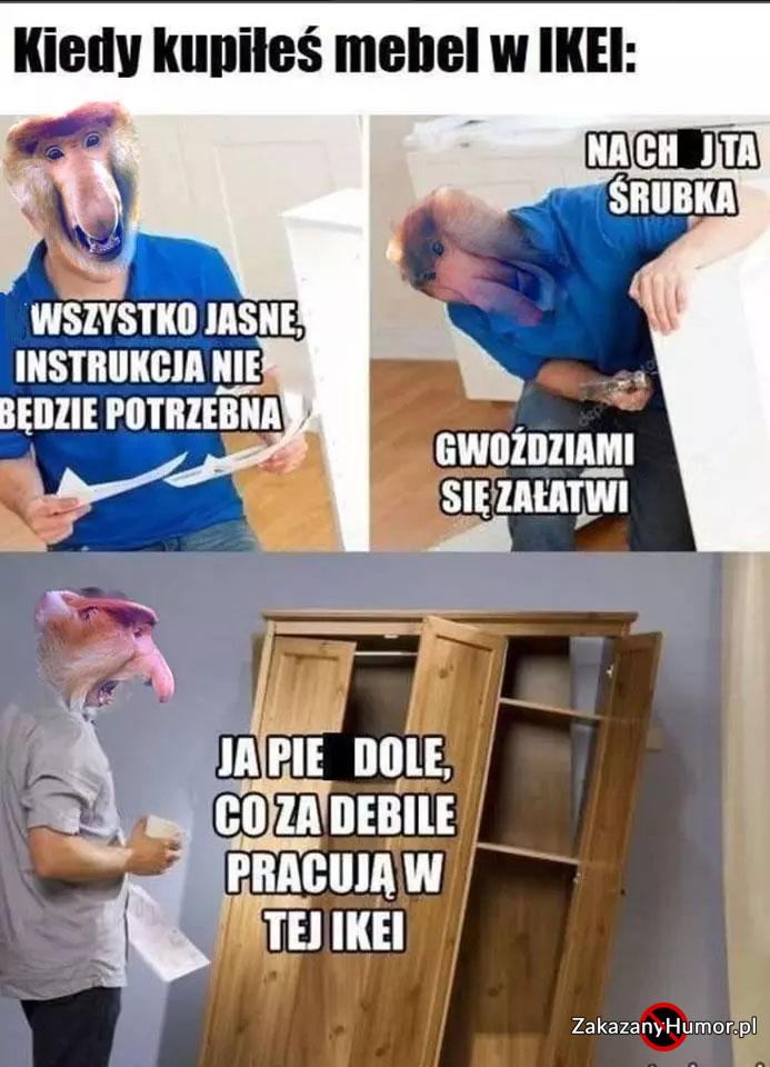 xKiedy-Janusz-kupi-mebel-w-IKEI-xD.jpg.pagespeed.ic.ZGZ5LY9gJx