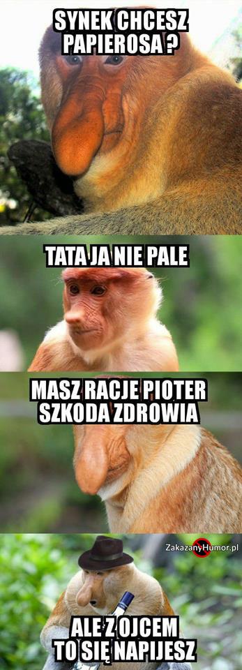 Janusz-namawia-Pjotera-do-złego