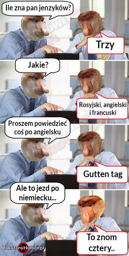 xPoliglota-Janusz-xD-516x1024.jpg.pagespeed.ic.gb_MrGwkVF