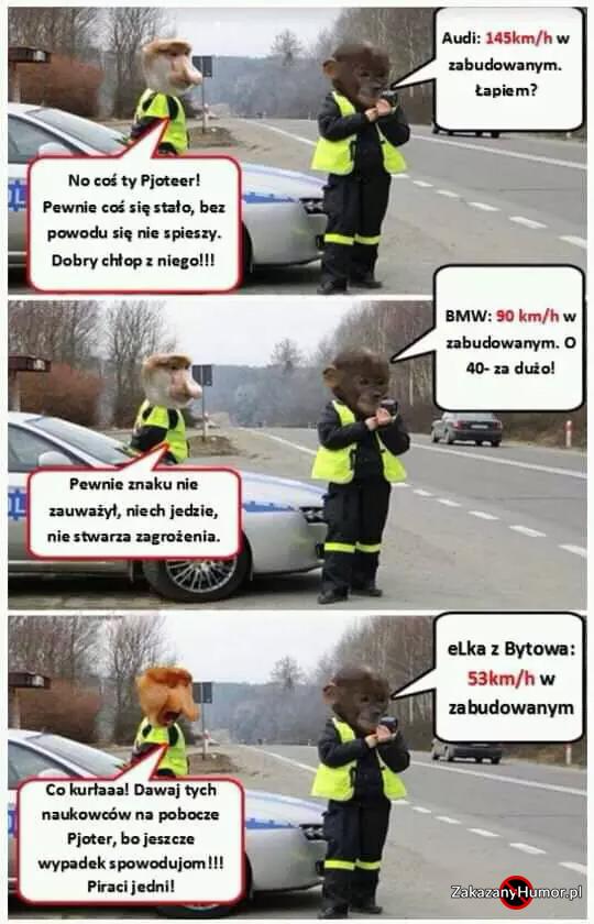 xJanusz-policjant-xD.jpg.pagespeed.ic.t7nAdnbE_j