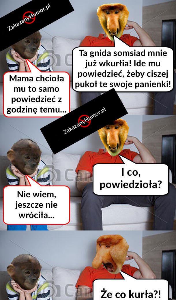 Żona-Janusza-u-somsiada
