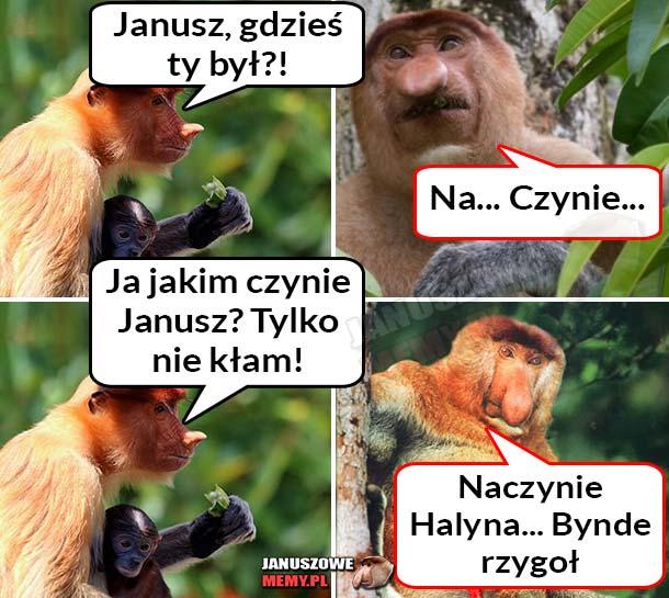 Gdzie-był-Janusz